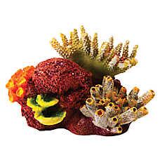 National Geographic™ Coral Cluster Aquarium Ornament