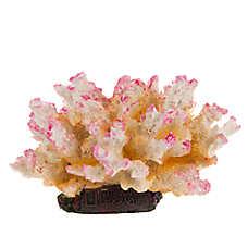 National Geographic™ Coral Stag Aquarium Ornament