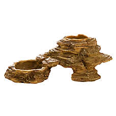 National Geographic™ Desert Reptile Dish
