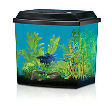 National Geographic™ Half-Moon Aqua Oasis Starter Kit