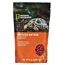 National Geographic™ Tortoise Entrée