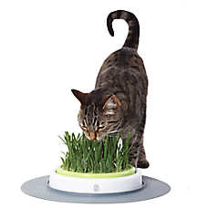 Catit® Senses Cat Grass Garden Kit
