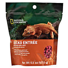 National Geographic™ Gecko Entrée