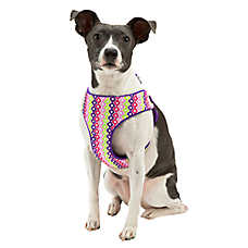 Top Paw® Geo Clover Step-In Dog Harness