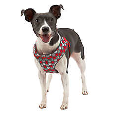 Top Paw® Paw Print Step-In Dog Harness
