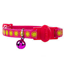 Whisker City® Glowing Starburst Cat Collar