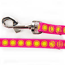 Whisker City® Glowing Starburst Cat Leash