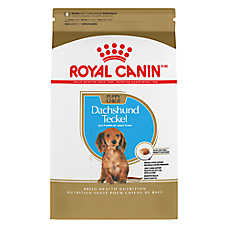 Royal Canin® Breed Health Nutrition™ Dachshund Puppy Food