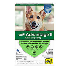 Advantage® II Over 55 Lb Dog Flea & Lice Treatment