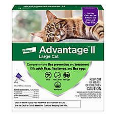Advantage® II Over 9 Lb Cat Flea Prevention & Treatment