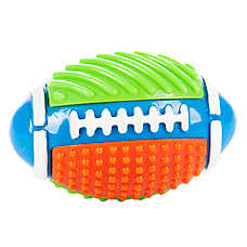 "Toys""R""Us® Football Dog Toy"