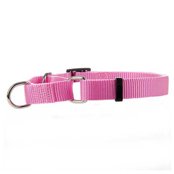 Petsmart Dog Collars