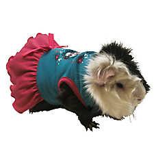 All Living Things® Best Friends Small Pet Dress