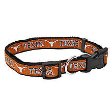 University of Texas Longhorns NCAA Collar