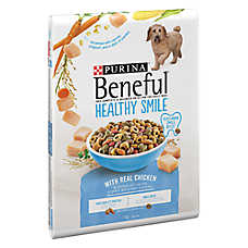 Purina® Beneful® Healthy Smile Adult Dog Food