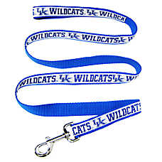 University of Kentucky Wildcat NCAA Leash