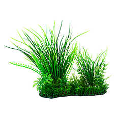 National Geographic™ Landscape Grass Aquarium Plant