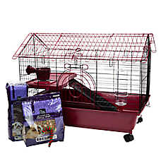 All Living Things® Guinea Pig Starter Kit Bonus