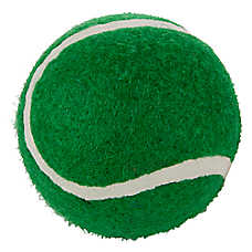 Grreat Choice® Holiday Tennis Ball (COLOR VARIES)