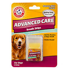 ARM & HAMMER™ Advanced Care Banana Mint Fresh Breath Dog Breath Strips