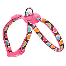 Top Paw® Groovy Dot Figure Eight Adjustable Harness