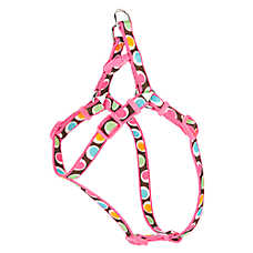 Top Paw® Groovy Dot Adjustable Step-In Harness
