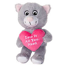 "Luv-A-Pet™ ""Love Is All You Need"" Squeaker Dog Toy"