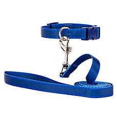 Grreat Choice Adjustable Dog Collar & Leash Set