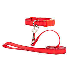 Grreat Choice Adjustable Dog Collar & Leash Set