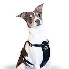 K&H Travel Safety Pet Harness