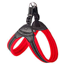 Top Paw® Easy Fit Dog Harness