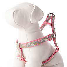 Top Paw® Emma Floral Adjustable Step-In Dog Harness