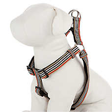 Martha Stewart Pets® Core Striped Step-In Harness