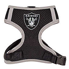 Oakland Raiders NFL Dog Harness