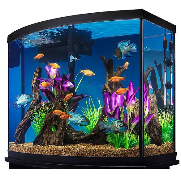 Marineland® 38 Gallon Aquarium Starter Kit | fish Starter ...