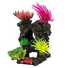 National Geographic™ Coral Swim Thru Aquarium Ornament