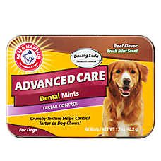 ARM & HAMMER™ Advanced Care Beef Flavor Dental Mints