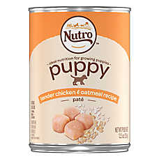 NUTRO™ Puppy Food - Natural, Tender Chicken & Oatmeal