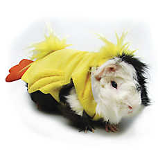 All Living Things® Spring Chick Small Pet Costume