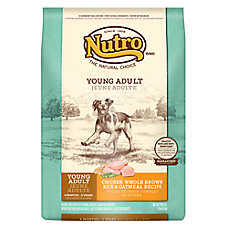 NUTRO® Chicken, Brown Rice & Oatmeal Young Adult Dog Food