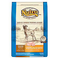 NUTRO® Chicken, Brown Rice & Oatmeal Large Breed Young Adult Dog Food