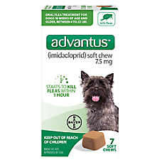 Advantus™ 4-22 Lb Dog Flea & Tick Treatment