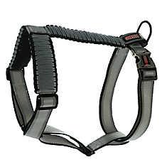 KONG® Paracord Reflective Adjustable Harness
