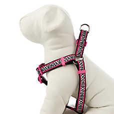 Material Girl Pets Roxy Zebra Adjustable Dog Harness