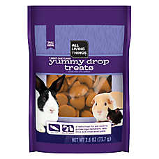 All Living Things® Yummy Carrot Cake Drops for Small Animals