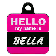 TagWorks® Hello My Name Is Personalized Pet ID Tag