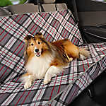 Top Paw® Plaid Fashion Rear Seat Protector