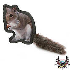 Bret Michaels Pets Rock™ Critter Squirrel Dog Toy - Squeaker