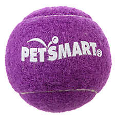 Grreat Choice™ Pet Halloween Tennis Ball Dog Toy (COLOR VARIES)