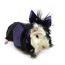 All Living Things® Pet Halloween Bat Small Pet Costume